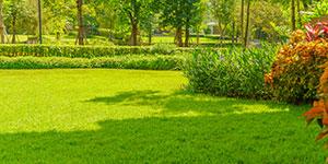 Alpharetta Landscape Design