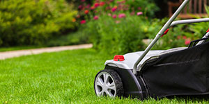 Alpharetta Lawn Care & Maintenance
