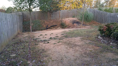 the yard before