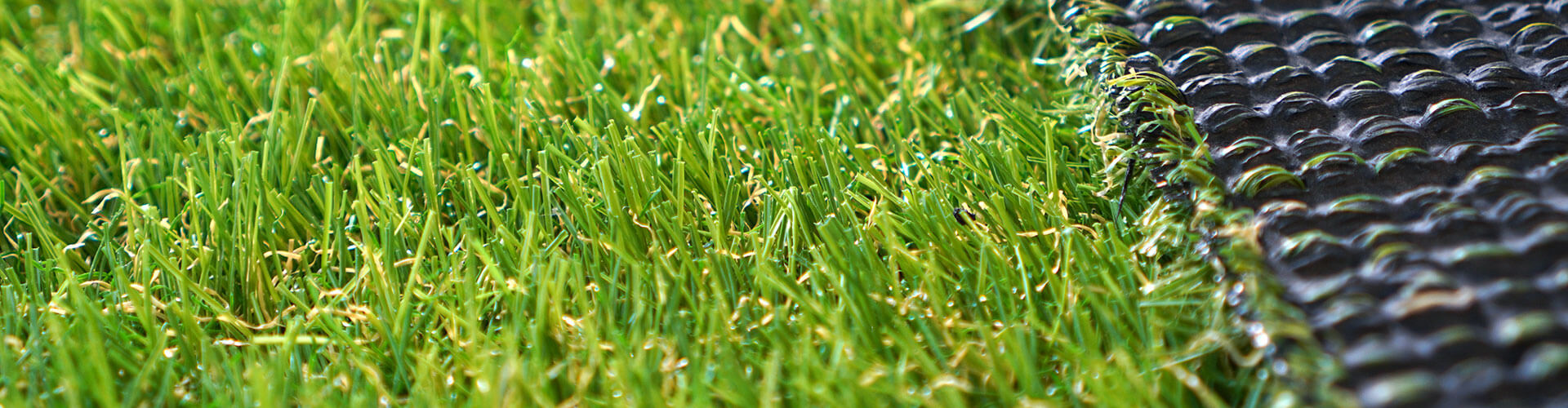 Artificial grass close-up.